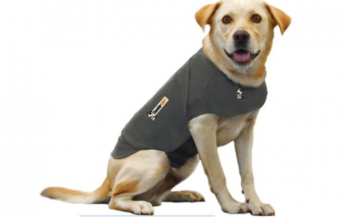 ThunderShirt - For Dogs - Heather Grey Size: Small